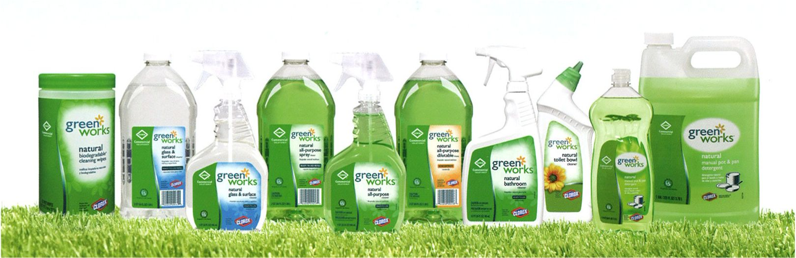 Cleaning Products Services Eco Friendly