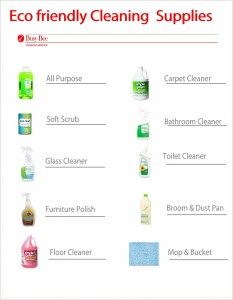 Cleaning Supplies Checklist Best 25+ Cleaning Supplies Ideas On ...