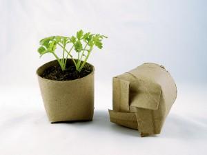 Green Growing